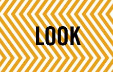 PROG_look